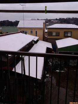 雪降った朝.jpg